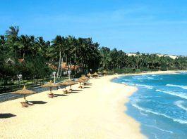 Biển xanh cát trắng nắng vàng