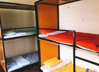 phòng dorm tại halo homestay đà nẵng
