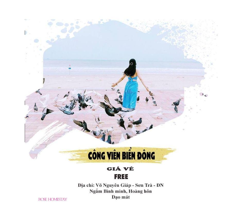 Bạn là người yêu thiên nhiên và động vật, thả hồn bay cùng những chú bồ cầu hòa bình tại Công viên Biển Đông nhé
