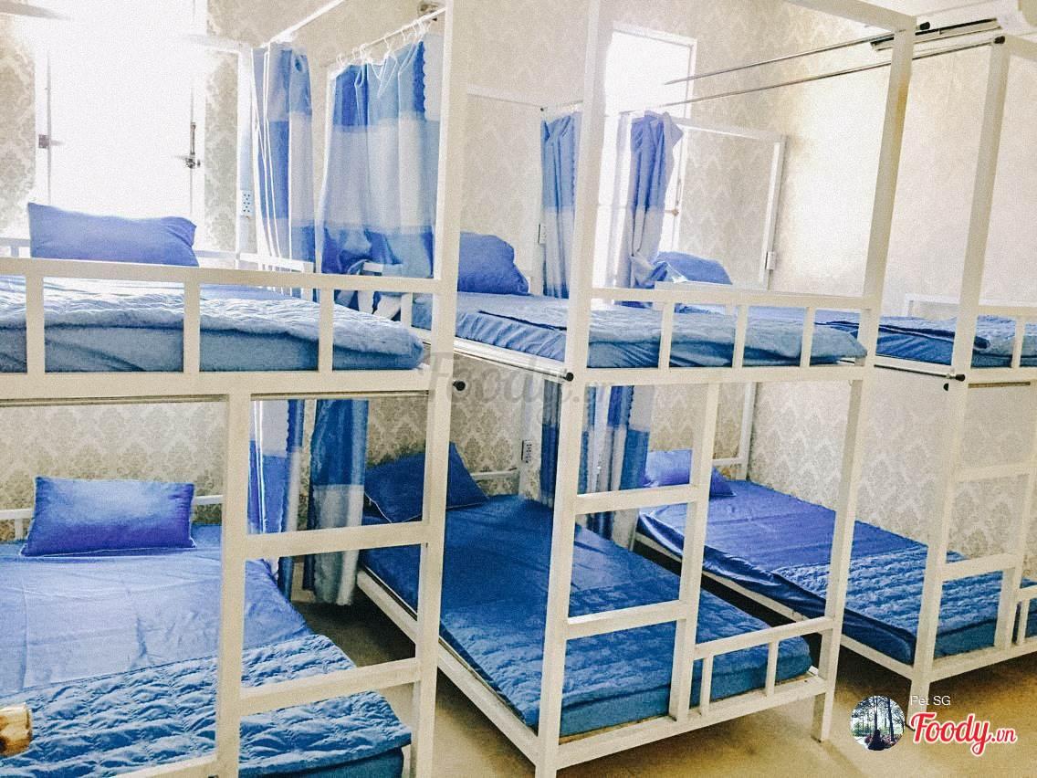 Phòng dorm có rèm che đảm bảo sự riêng tư cho bạn
