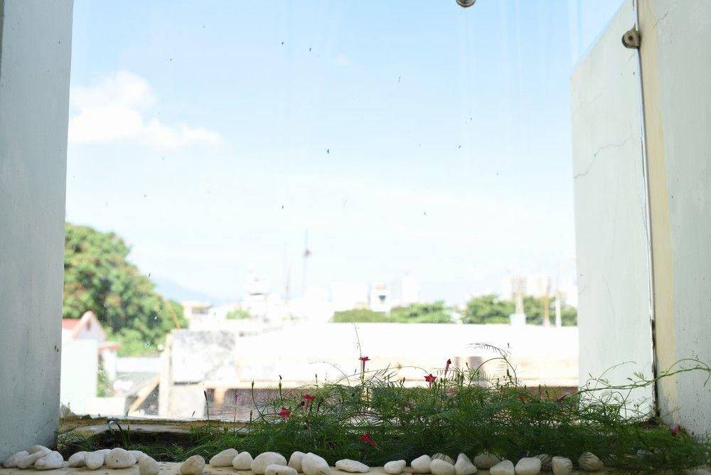 View tại Homestay đẹp tại quận Thanh Khê